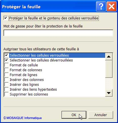Les options de protection - Excel - MOSAIQUE Informatique - 54 - Nancy - Meurthe et Moselle - Lorraine