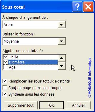 La boîte de dialogue Sous-total - Excel - MOSAIQUE Informatique - 54 - Nancy - Meurthe et Moselle - Lorraine