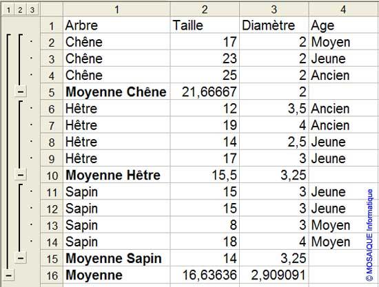 Après la création des sous-totaux - Excel - MOSAIQUE Informatique - 54 - Nancy - Meurthe et Moselle - Lorraine