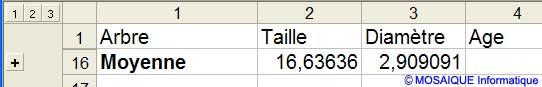 Seul le total général est affiché - Excel - MOSAIQUE Informatique - 54 - Nancy - Meurthe et Moselle - Lorraine