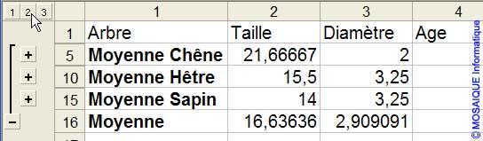 L'affichage des sous-totaux - Excel - MOSAIQUE Informatique - 54 - Nancy - Meurthe et Moselle - Lorraine