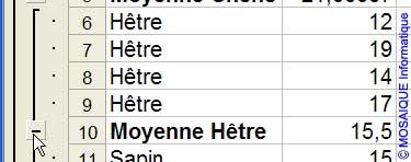 Réduire la zone de sous-total - Excel - MOSAIQUE Informatique - 54 - Nancy - Meurthe et Moselle - Lorraine
