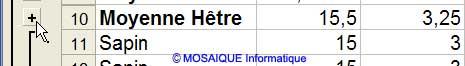 Développer la zone de sous-total - Excel - MOSAIQUE Informatique - 54 - Nancy - Meurthe et Moselle - Lorraine