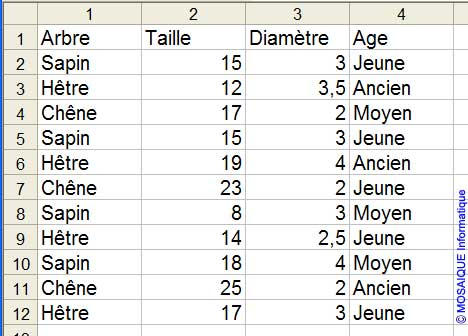 Les données à saisir - Excel - MOSAIQUE Informatique - 54 - Nancy - Meurthe et Moselle - Lorraine