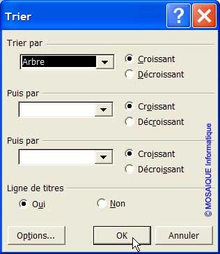 Les paramètres du tri - Excel - MOSAIQUE Informatique - 54 - Nancy - Meurthe et Moselle - Lorraine