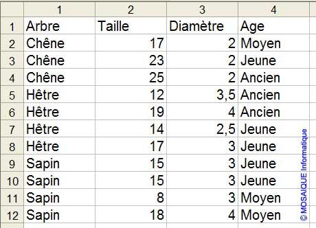 Les données sont désormais triées - Excel - MOSAIQUE Informatique - 54 - Nancy - Meurthe et Moselle - Lorraine
