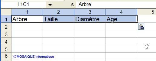 Les en-têtes de colonnes sont reproduits dans la feuille qui renfermera les critères du filtre élaboré - Excel - MOSAIQUE Informatique - Formations informatiques et création de sites Internet - 54 - Nancy - Meurthe et Moselle - Lorraine