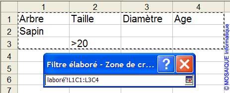 La zone de critères - Excel - MOSAIQUE Informatique - Formations informatiques et création de sites Internet - 54 - Nancy - Meurthe et Moselle - Lorraine