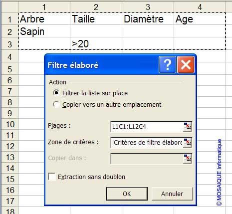 La boîte de dialogue Filtre élaboré - Excel - MOSAIQUE Informatique - Formations informatiques et création de sites Internet - 54 - Nancy - Meurthe et Moselle - Lorraine