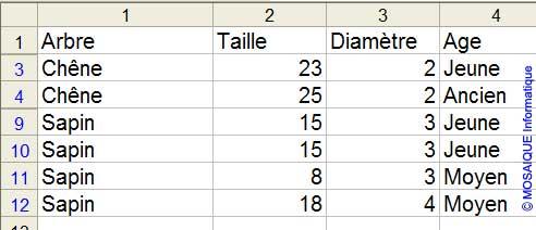 Les données, après application du filtre élaboré - Excel - MOSAIQUE Informatique - Formations informatiques et création de sites Internet - 54 - Nancy - Meurthe et Moselle - Lorraine