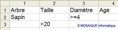 Les critères du filtre élaboré - Excel - MOSAIQUE Informatique - Formations informatiques et création de sites Internet - 54 - Nancy - Meurthe et Moselle - Lorraine