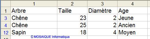 Après application du filtre - Excel - MOSAIQUE Informatique - Formations informatiques et création de sites Internet - 54 - Nancy - Meurthe et Moselle - Lorraine