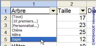 Le choix de l'élément dans la liste - Excel - MOSAIQUE Informatique - 54 - Nancy - Meurthe et Moselle - Lorraine