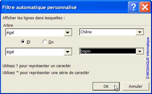 Les conditions du filtre sont définies dans la boîte de dialogue - Excel - MOSAIQUE Informatique - Formations informatiques et création de sites Internet - 54 - Nancy - Meurthe et Moselle - Lorraine