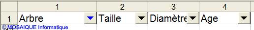 La liste est vide - Excel - MOSAIQUE Informatique - Formations informatiques et création de sites Internet - 54 - Nancy - Meurthe et Moselle - Lorraine