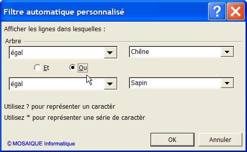 C'est l'opérateur OU qui est maintenant utilisé - Excel - MOSAIQUE Informatique - Formations informatiques et création de sites Internet - 54 - Nancy - Meurthe et Moselle - Lorraine