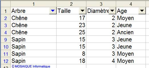 Les éléments souhaités sont désormais affichés dans la liste - Excel - MOSAIQUE Informatique - Formations informatiques et création de sites Internet - 54 - Nancy - Meurthe et Moselle - Lorraine
