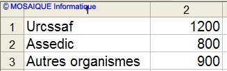 Les données à saisir - Excel - MOSAIQUE Informatique - Formations  informatiques - Création de sites web - 54 - Nancy - Meurthe et Moselle - Lorraine