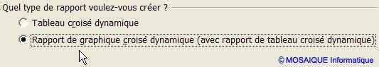 Cette fois, c'est l'option Graphique croisé dynamique qui est choisie - Excel - MOSAIQUE Informatique - Formations informatiques et création de sites web - 54 - Nancy - Meurthe et Moselle - Lorraine