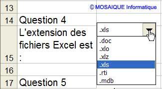 La feuille Quiz- Excel - MOSAIQUE Informatique - Formations informatiques et bureautiques, création de sites web - 54 - Nancy - Meurthe et Moselle - Lorraine