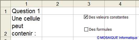 Les cases à cocher, après modification de leurs étiquettes - Excel - MOSAIQUE Informatique - Formations informatiques et bureautiques, création de sites web - 54 - Nancy - Meurthe et Moselle - Lorraine