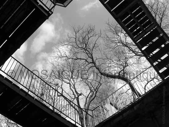 Cours photo - Un angle de vue particulier et une composition symétrique