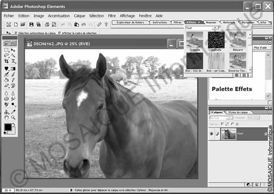 Cours Photo numérique - Photoshop Elements