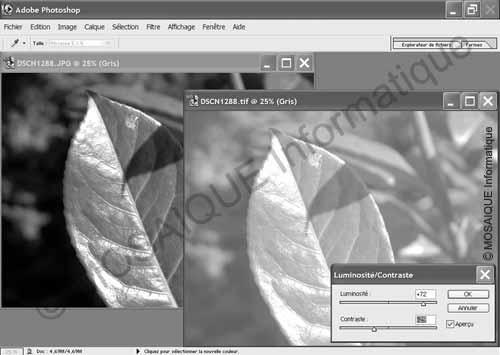 Photo numérique - Augmentation de la luminosité et diminution du contraste sur l'image de droite