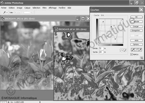 Photo numérique - La commande Courbes de Photoshop 7 autorise une modification des niveaux sur 256 points d'entrées et de sorties : elle ouvre une porte vers des résultats surprenants