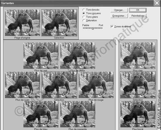 Cours photo numérique - La commande Variantes, présente sur de nombreux logiciels, permet d'estimer le résultat avant la modification colorimétrique de l'image