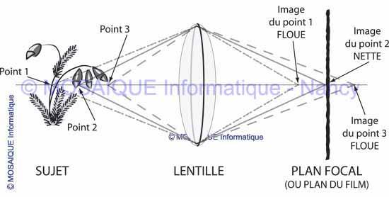 La profondeur de champ - Tutoriel photo numérique - MOSAIQUE Informatique - Formations informatiques - Nancy - Lorraine