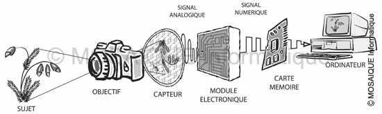 Tutoriel photo numérique - L'acquisition et l'enregistrement d'une image - MOSAIQUE Informatique - Création de sites Internet - Nancy - Lorraine