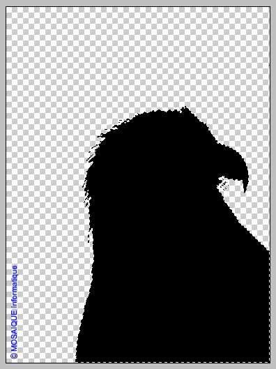 La sélection est remplie avec du noir - Tutoriel / didacticiel Photoshop - Formations informatiques en Lorraine - MOSAIQUE Informatique