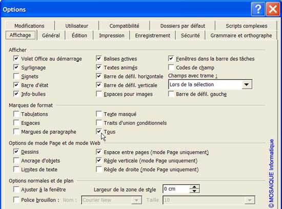 L'affichage des marques de format - Word - MOSAIQUE Informatique - Formations informatiques et création de sites web - 54 - Nancy - Meurthe et Moselle - Lorraine