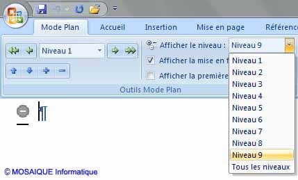 Word 2007 - La liste déroulante Afficher le niveau