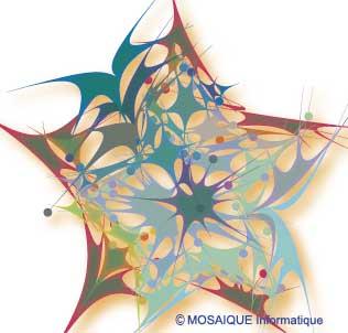 Création de logiciels - MOSAIQUE Informatique - 54000 - NANCY